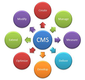 enterprise cms vs open source cms
