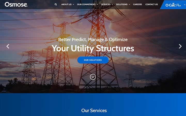 Osmose Utilities Services, Inc.
